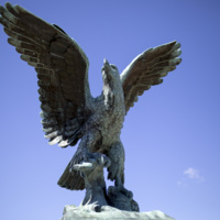 Photograph of The Eagle - AO-00095-017.jpg