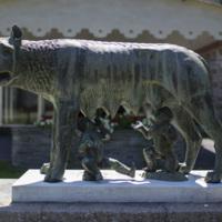 Photograph of Roman Wolf - AO-00146-016.jpg