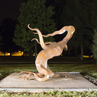 Photograph of Fire Dance - AO-00160-019.jpg